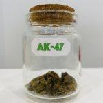 fleurs cbd ak-47